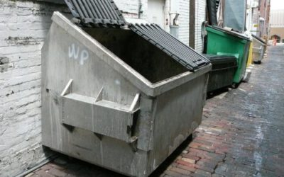 Trash Audit – Recycling or Expense
